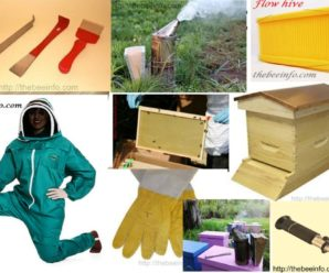 Beekeeping Supplies: Best 7 Beehive Supply Companies For Apiary. (114)