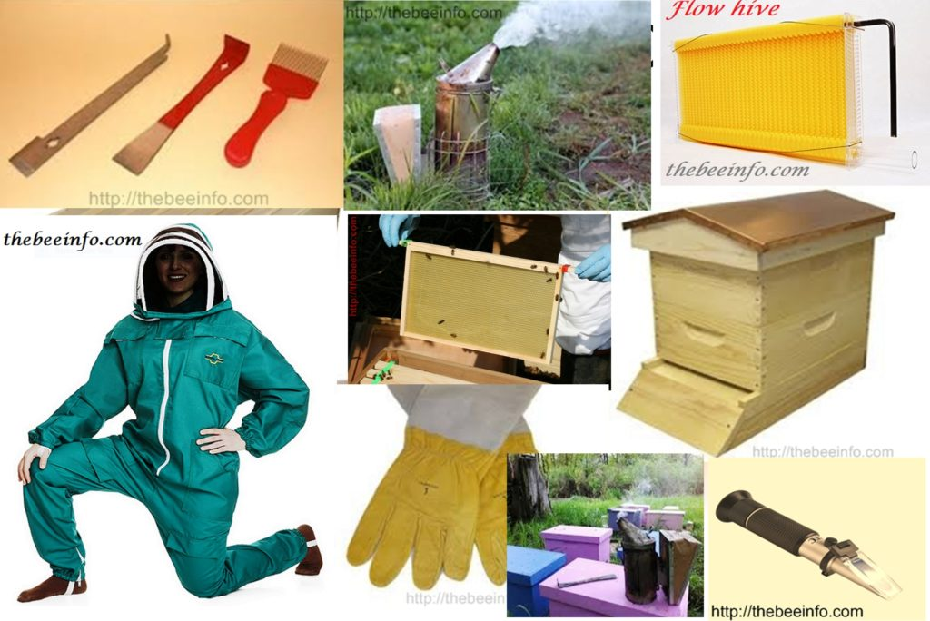 Shopping Almost Everything in Amazon including Beehive Supplies
