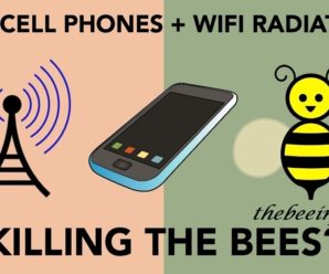 Honey Bee Infestation, Chemical And Cell Phone Effects on Honey Bees. (123)
