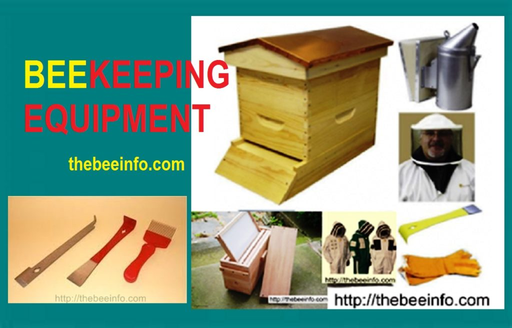 Beehive Equipment: How To Use Beehive Equipment & Tools? (136)