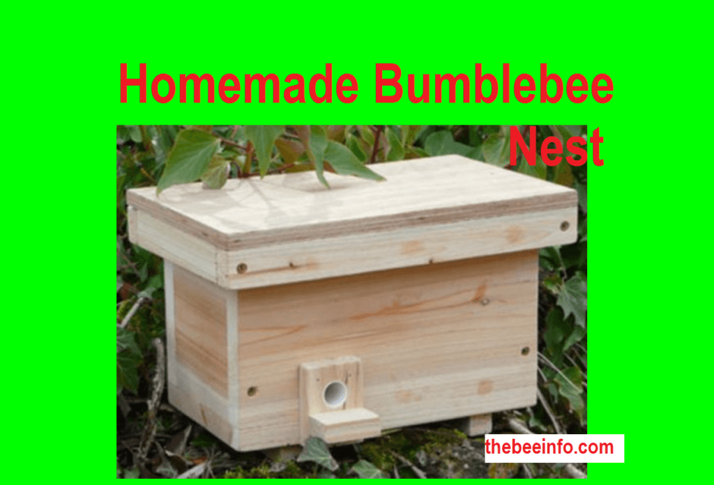 The Bees With Homemade Nests. can Help to Pollinate Crops. (184)