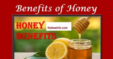 188: Honey for weight loss: 6 impressive benefits of honey for weight loss