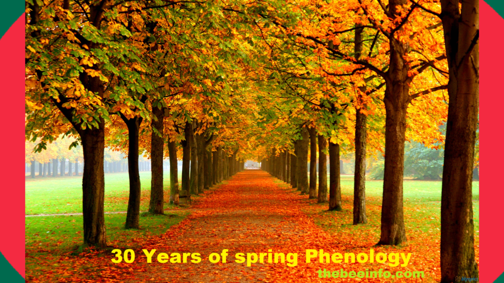Bee Management Introduction - Thirty Years of Spring – Phenology. (141)