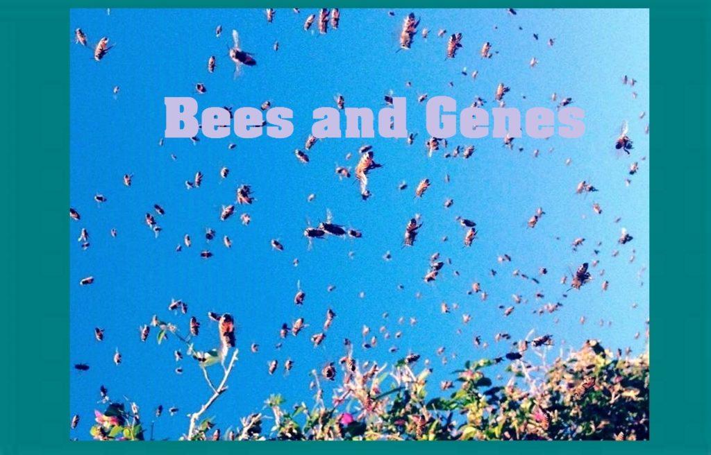 Bees and Genes: Sociogenomic Study Beyond the Beehive. (142)