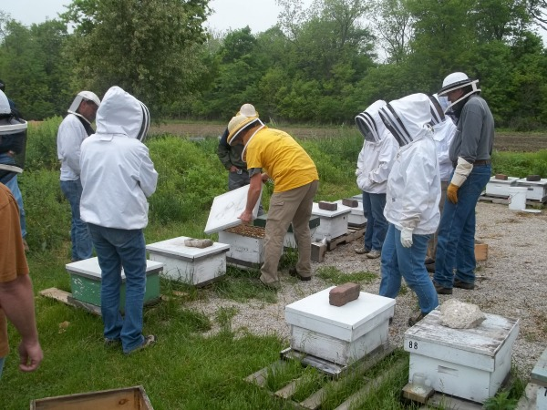 Grant Proposal: Beekeeping Project Grants For Raising Honey Bees.
